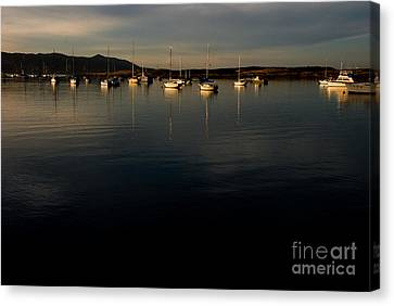 Canvas Print featuring the photograph Morning On The Bay by Terry Garvin