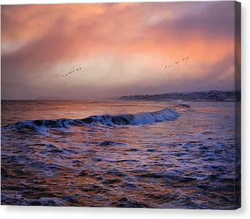 Canvas Print featuring the photograph Morning On The Coast by Roy  McPeak