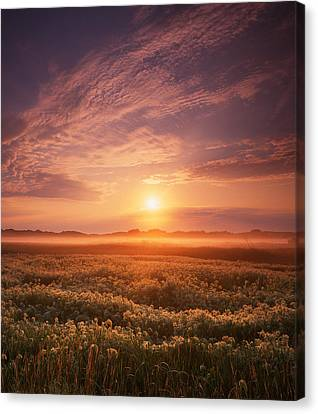 Morning On The Fen Canvas Print by Ray Mathis