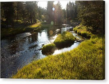 Morning On The Firehole Canvas Print
