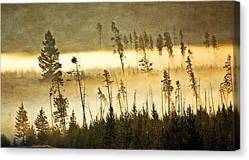 Morning On The Madison Canvas Print by Marty Koch