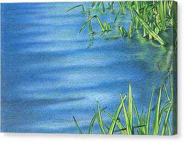 Morning On The Pond Canvas Print