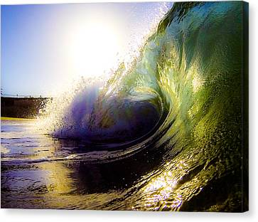 Morning Perfection Canvas Print by David Alexander