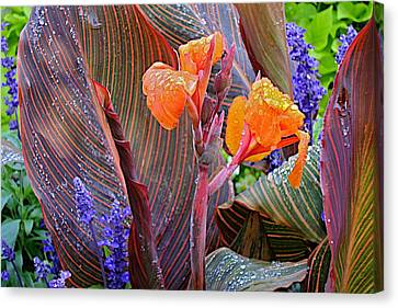 Canvas Print featuring the photograph Morning Rain by Joseph Yarbrough