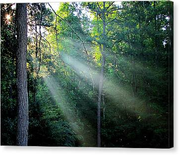 Canvas Print featuring the photograph Morning Rays by Greg Simmons