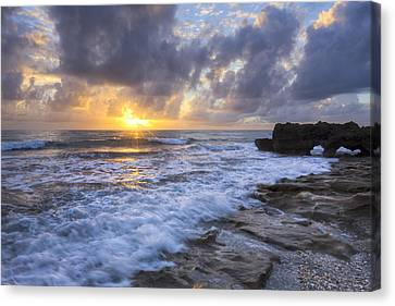 Morning Rush Canvas Print by Debra and Dave Vanderlaan