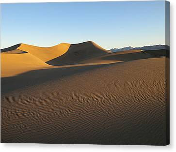Canvas Print featuring the photograph Morning Shadows by Joe Schofield