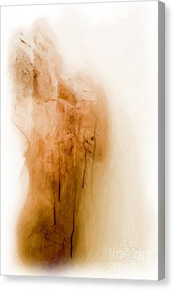 Morning Shower Canvas Print by Edwin Davis