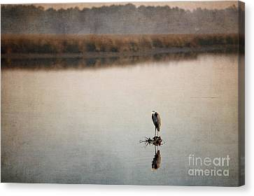 Morning Solitude Canvas Print by Joan McCool