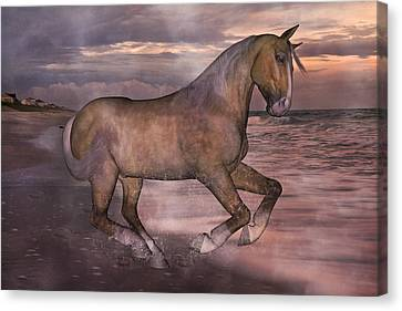 Morning Spirit Canvas Print by Betsy Knapp