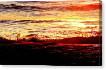 Morning Splash Canvas Print by Karen Wiles