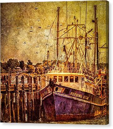 Morning Star Canvas Print by Bob Orsillo