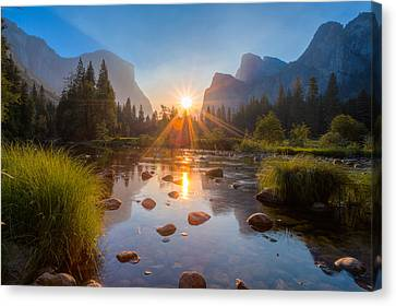Morning Star Canvas Print