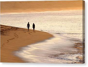 Morning Stroll Canvas Print by Dan Holm