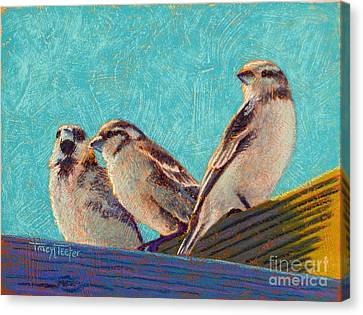 Morning Sunshine Canvas Print by Tracy L Teeter