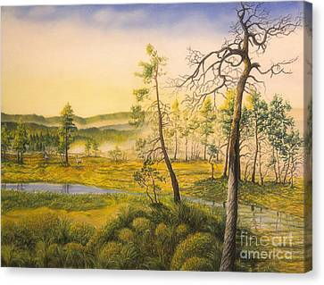 Harmonious Canvas Print - Morning Swamp by Veikko Suikkanen