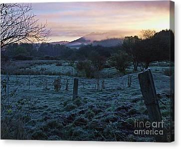 Morning Twilight Canvas Print by Christian Mattison