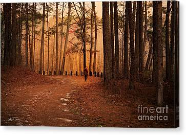 Morning Walk Canvas Print by Sally Simon