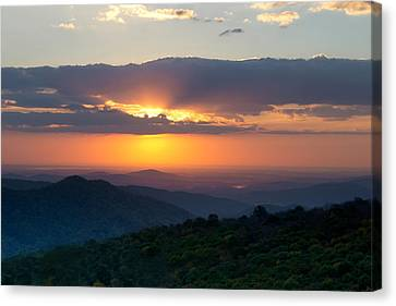 Canvas Print featuring the photograph Mornings Like This by Melanie Moraga