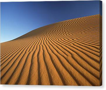 Simple Beauty In Colors Canvas Print - Morocco, Detail Of Sand Dune At Dawn by Ian Cumming
