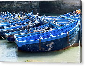 Morocco, Essaouira, Boats In Harbor Canvas Print by Emily Wilson