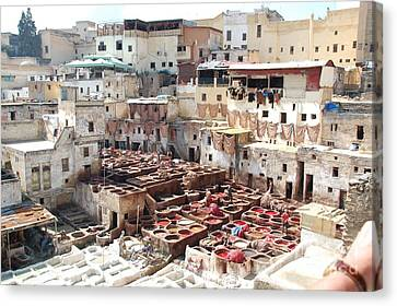 Morocco Learn Color Work Fez Leather Learning Canvas Print by Paul Fearn