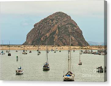 Moro Bay Image Canvas Print - Morro Bay Rock At Dawn by Artist and Photographer Laura Wrede