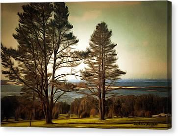 Morro Bay Trees Canvas Print by Barbara Snyder