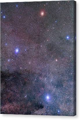 Mosaic Of Crux, The Southern Cross Canvas Print by Alan Dyer