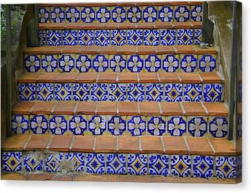 Mosaic Steps Canvas Print