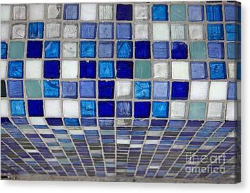 Mosaic Tile Canvas Print by Tony Cordoza