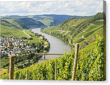 Mosel Area Canvas Print by Patricia Hofmeester