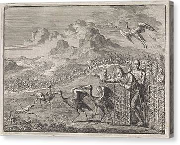 Moses Dispels The Snakes By Releasing Ibises Canvas Print