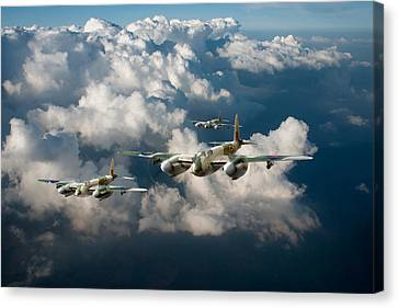 Mosquitos Above Clouds Canvas Print