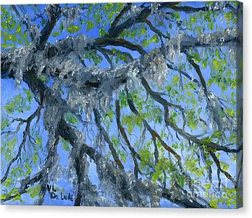 Moss Covered Oak And Blue Sky Canvas Print by Lenora  De Lude