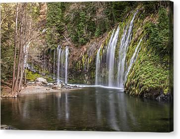 Mossbrae Falls Canvas Print by Randy Wood