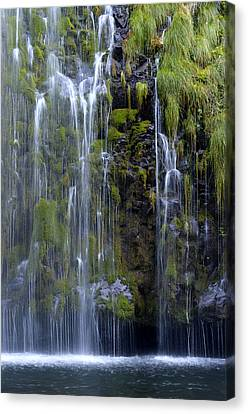 Mossbrae Canvas Print