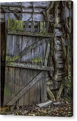 Mossy Barn Door Canvas Print by Amber Kresge