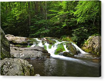 Mossy Falls Canvas Print by Frozen in Time Fine Art Photography