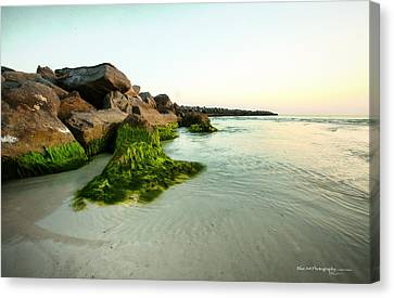 Mossy Lagoon Canvas Print by Volker blu Firnkes
