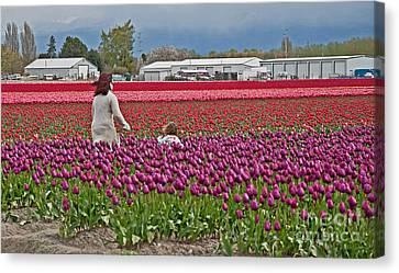 People In Tulip Fields Art Prints Canvas Print