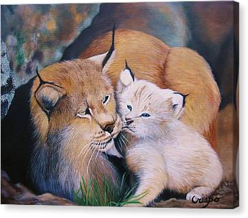 Mother And Kitten Bobcat Canvas Print by Jean Yves Crispo