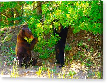 Mother Bear And Cub Canvas Print by Jeff Swan