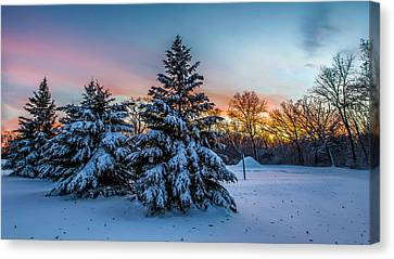 Mother Nature Is The Best Decorator Canvas Print by Randy Scherkenbach