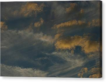 Mother Natures Art S-xix Canvas Print by Sean Holmquist