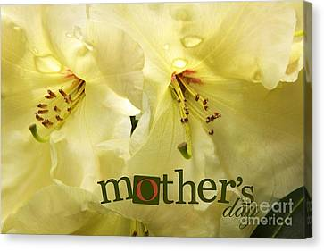Canvas Print featuring the photograph Mothers Day by Jean OKeeffe Macro Abundance Art