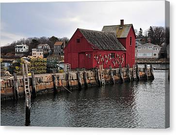 Motif # 1 Canvas Print by Mike Martin