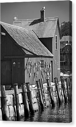 Motif Number One Bw Black And White Rockport Lobster Shack Maritime Canvas Print by Jon Holiday