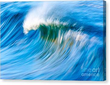 Motion Captured Canvas Print by Paul Topp