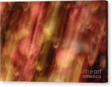 Not In Use Canvas Print - Motion Series - 218 by Paul W Faust -  Impressions of Light